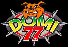 Dominique-Aegerter-77-logo